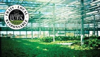 #Conceptécolo : Vous connaissez Les Fermes Lufa ? C'est un concept canadien qui propose de cultiver vos fruits et légumes sur les toits des villes ! Et tout ca de facon responsable : en utilisant moins d'énergie et sans pesticides synthétiques ! Pour commander vos paniers c'est ici : https://montreal.lufa.com/fr/how-it-works